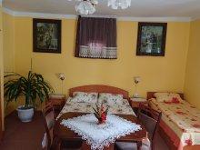 Accommodation Lăzarea, Tichet de vacanță, Ildikó Nagy Guesthouse