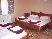 Accommodation Boroșneu Mic, T&T Guesthouse