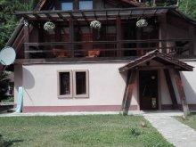 Casă de vacanță Susenii Bârgăului, Casa de vacanță VIP