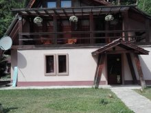 Cazare Tiha Bârgăului, Casa de vacanță VIP