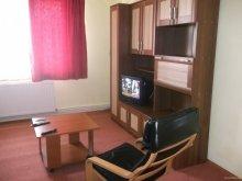 Accommodation Sânzieni, Cynthia Apartment
