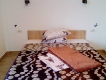 Motel Valu lui Traian, Casa LLB Villa