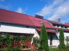 Accommodation Salty water pool Praid, Ivanciu Bogdan B&B