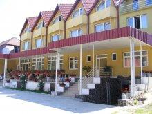 Accommodation Petrilaca de Mureș, Grandlion B&B