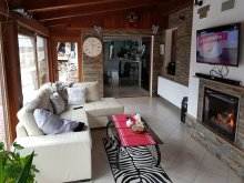 Accommodation Poieni (Parincea), Casa cu Muri Villa