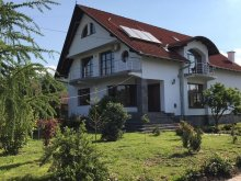 Accommodation Valea Borcutului, Ana Sofia House