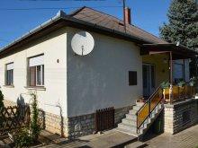 Cazare Ungaria, Apartament Erika