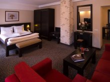 Cazare Satnoeni, Hotel Cherica