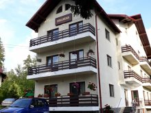 Villa Bălănești, Edelweiss Villa