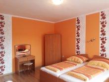 Apartman Tiszabábolna, Piknik Vendégház