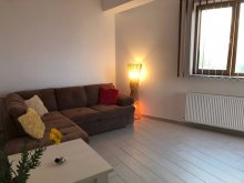 Accommodation Negrești, Studio Loft Apartment