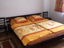 Casă de vacanță județul Bihor, Casa de vacanță Norby