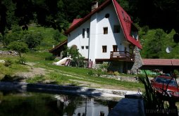 Accommodation Godeanu (Obârșia-Cloșani), Vila Cerbul B&B