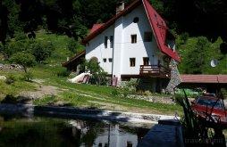Szállás Godeanu (Obârșia-Cloșani), Tichet de vacanță / Card de vacanță, Vila Cerbul Panzió