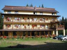 Guesthouse Miniș, Vila Vank