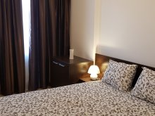 Accommodation Ciofliceni, Unirii Centrul Istoric Apartments