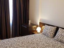 Accommodation Suseni-Socetu, Unirii Centrul Istoric Apartments