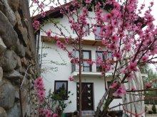 Accommodation Valea Cetățuia, Piscu Ioanei B&B