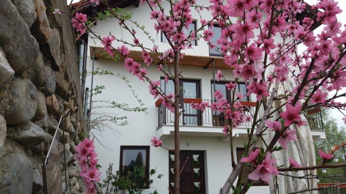 Casa Piscu Ioanei Poiana Mărului