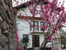 Pensiune Vinețisu, Casa Piscu Ioanei