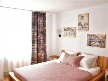 Apartment Bălăușeri, Cozy Central Studio Apartment