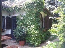 Accommodation Zala county, Gyümölcsöskert Guesthouse