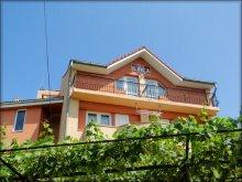 Accommodation Constanța county, Ilinca Ville