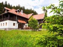Accommodation Valea Cetățuia, Ferndale Villa