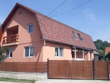 Accommodation Romania, Elvira Guesthouse