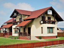 Accommodation Bistrița-Năsăud county, Nobila Vila
