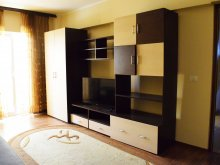 Cazare Siriu, Apartament SeaShell