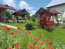 Apartman Argeș megye, Belvedere La Cristina Panzió