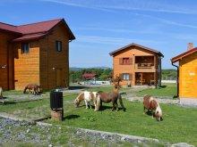 Casă de oaspeți Căpruța, Complex Turistic