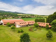 Bed & breakfast Vonyarcvashegy, Equital Horse Farm and Wellness B&B
