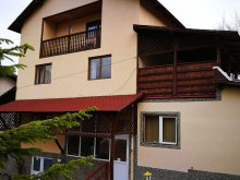 Accommodation Valea Corbului, Vitalis Family