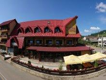Accommodation Cătămărești-Deal, Mușatinii Guesthouse