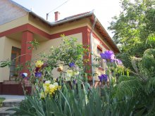 Accommodation Tiszavárkony, Cseresznyevirág Guesthouse