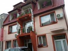 Accommodation Siliștea, Hotel Tranzzit