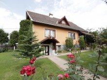 Accommodation Lacu Roșu, Szabó Guesthouse