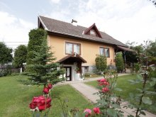 New Year's Eve Package Corund, Szabó Guesthouse