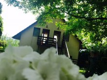 Accommodation Zebegény, Holiday Apartments