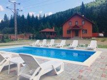 Accommodation Curcănești, Pap Vila