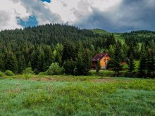 Accommodation Harghita county, Tópart Chalet