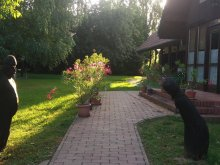 Panzió Orbányosfa, Sárkány Bio Panzió