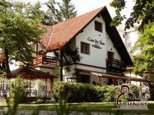 Szállás Pleșcoi, Tichet de vacanță, Casa din Parc Panzió
