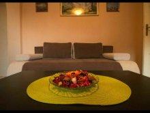Accommodation Suseni-Socetu, Universitate Apartment