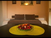 Accommodation Zidurile, Universitate Apartment
