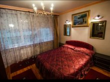 Accommodation Odaia Banului, Ateneu Apartment