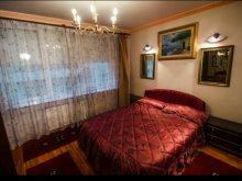 Accommodation Zidurile, Ateneu Apartment