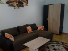 Accommodation Huzărești, Imobiliar Apartment